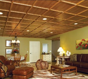 Basement Ceiling Ideas for Every Taste and Style