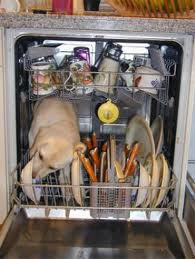 Dishwasher Buying Tips: