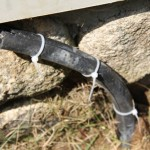 protecting low voltage landscape wires