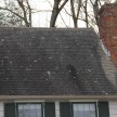 Remove Algae Stains Off Roof