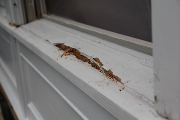 Repairing Rotted Window Sills A Concord Carpenter