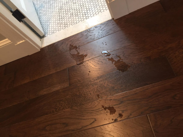 Caring for Shaw Epic PLUS Hardwood Flooring - A Concord ...