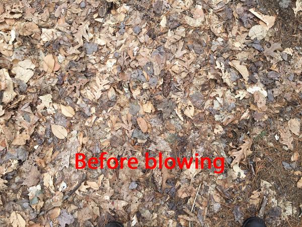 RYOBI 18 Volt Leaf Blower
